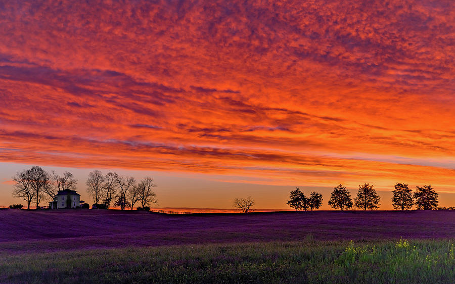 Vivid Virginia Sunrise by Lori Coleman
