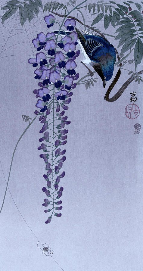 Vliegenvanger bij wisteria by Ruth Moratz