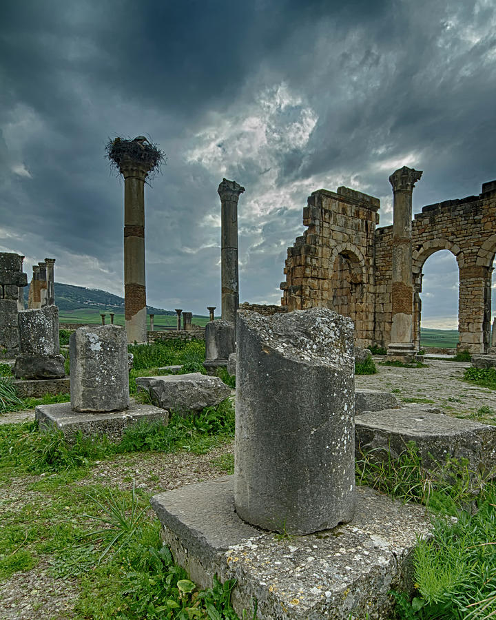 Volubilis Ruins by Lindley Johnson