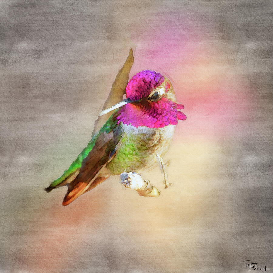 Vying for Attention in Digital Watercolor by Rick Furmanek