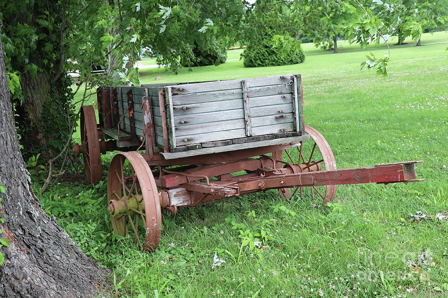 Wagon in Ky by Dwight Cook