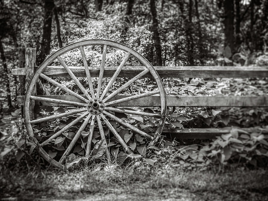 wagon wheel by Steve Stanger
