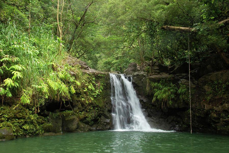 Waikamoi Falls by Marie Leslie