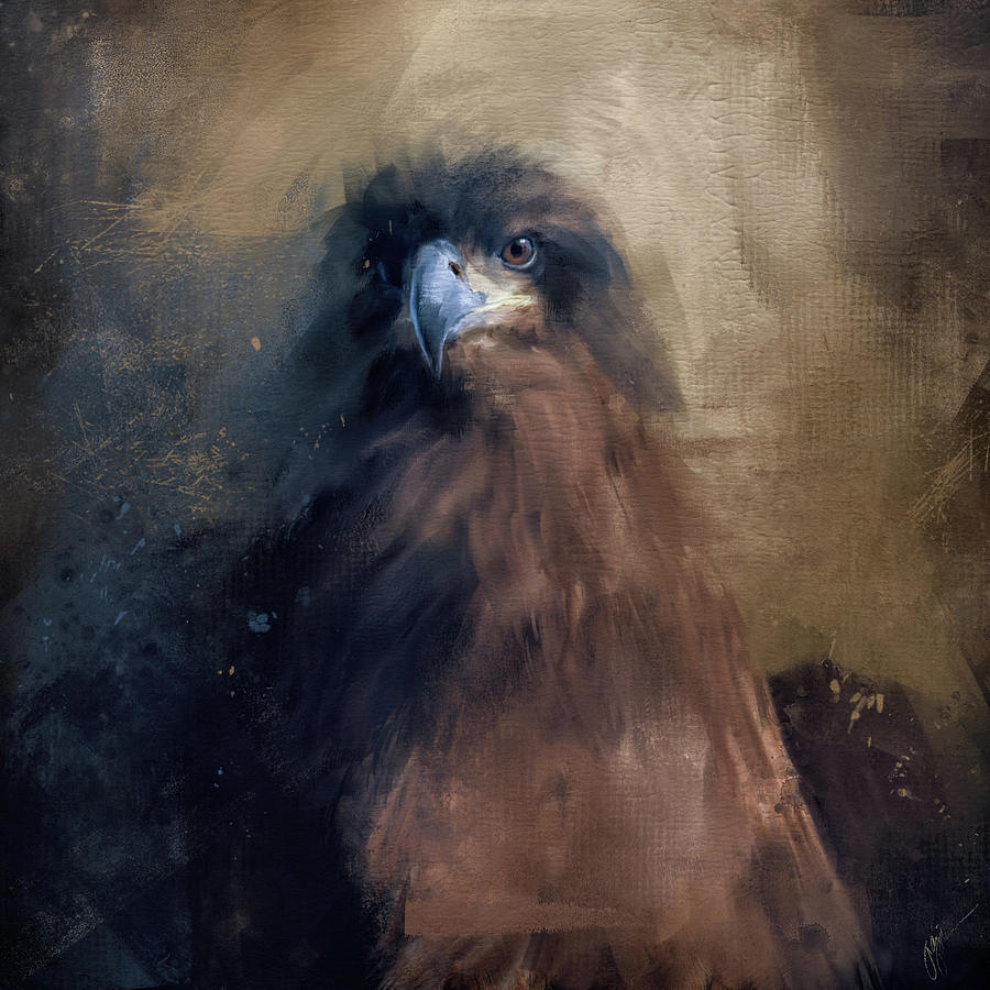 Waiting In The Dark - Eagle Art by Jai Johnson