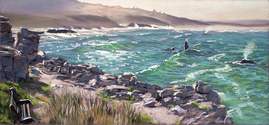 Walker Bay Whales by Christopher Reid