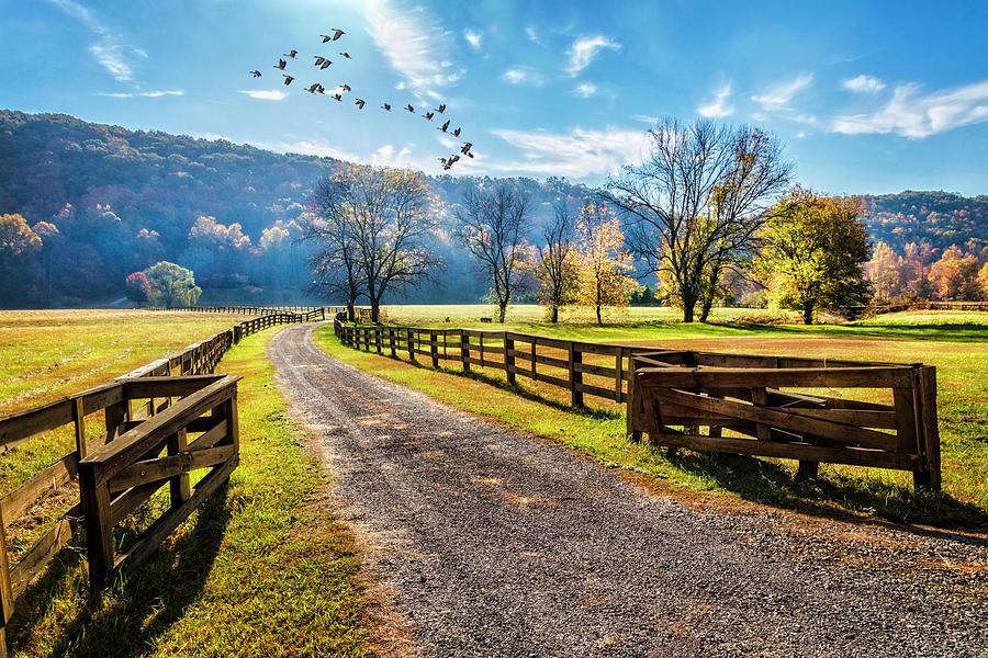 Walking Along the Farm Lane by Debra and Dave Vanderlaan