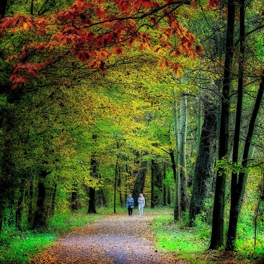 Walking among fall colors by Roberto Pagani
