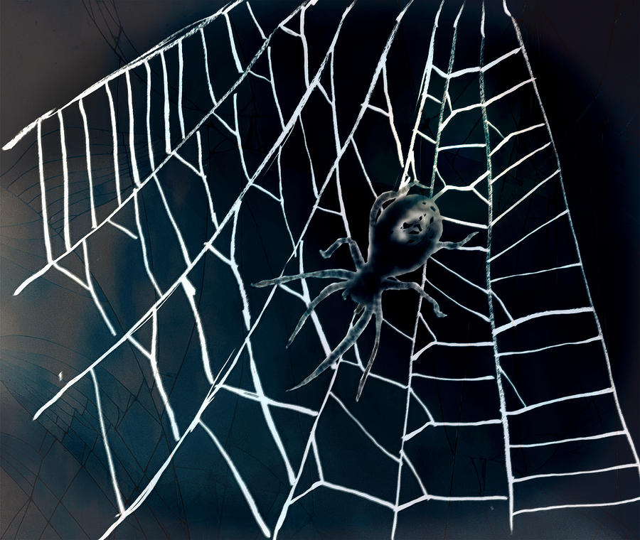 Walking on a spiderweb by Abstract Angel Artist Stephen K