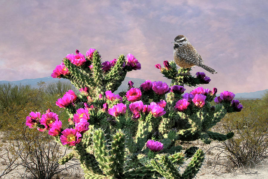 Cactus Digital Art - Walking Stick Cactus And Wren by M Spadecaller