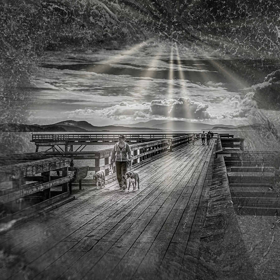 Walking the Dock by Barry Weiss