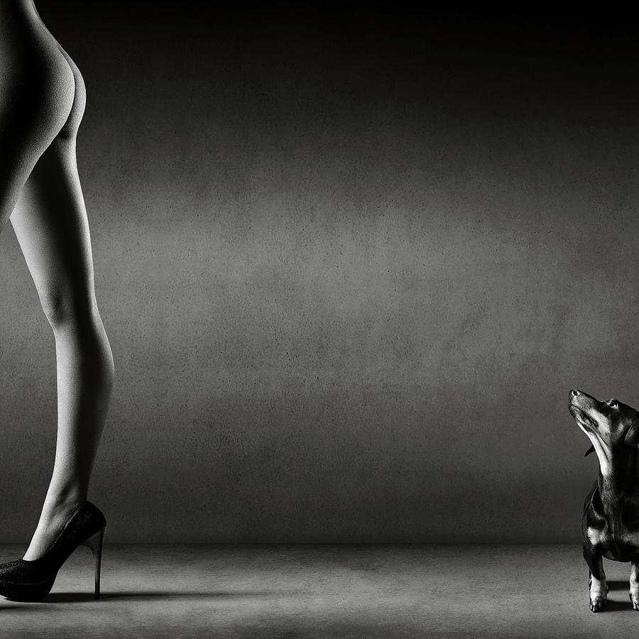 Nude Photograph - Walking the wild side by Johan Swanepoel