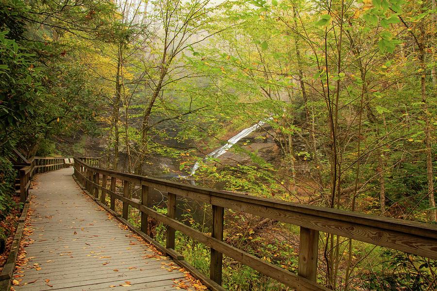 Walkway To Dingman Falls by Kristia Adams