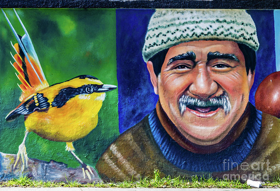 Wall painting in Puerto Natales, Chile by Lyl Dil Creations