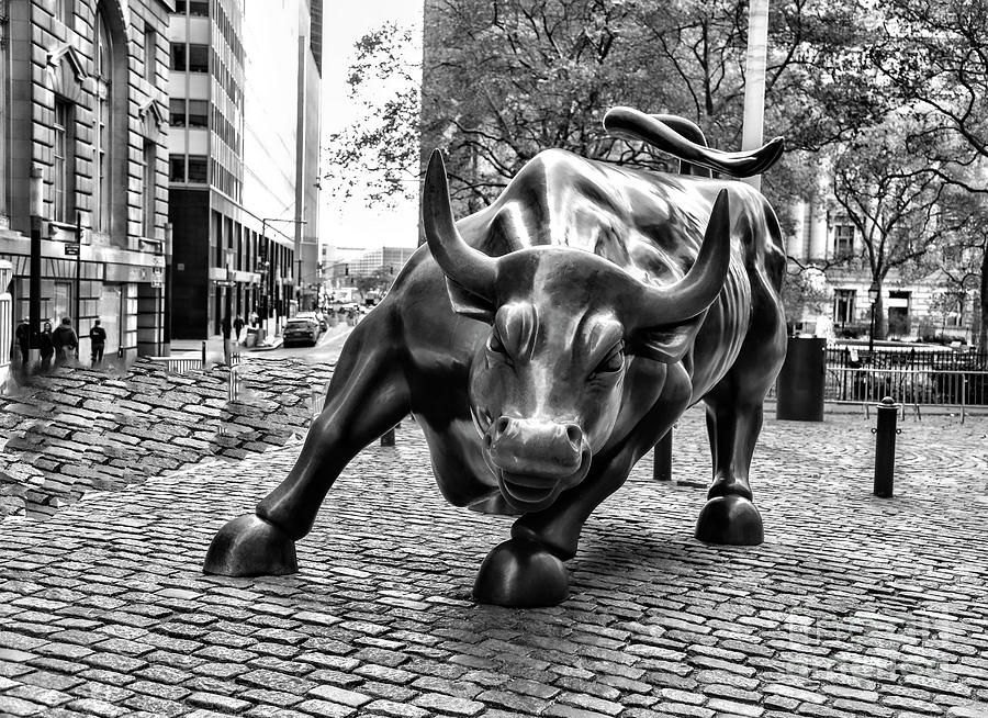 Wall Street Bull Black White NYC  by Chuck Kuhn