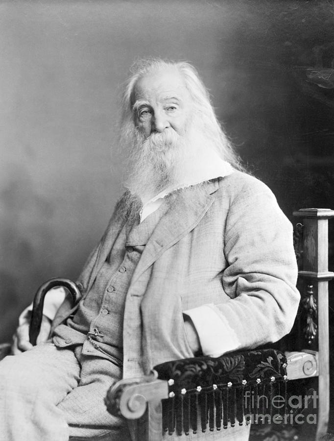 Walt Whitman Seated White Beard Photo Photograph by Bettmann