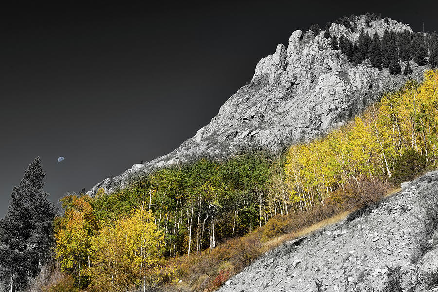 Monarch Pass Photograph - Waning Gibbous Moon Autumn Monarch Pass Bwsc by James BO Insogna