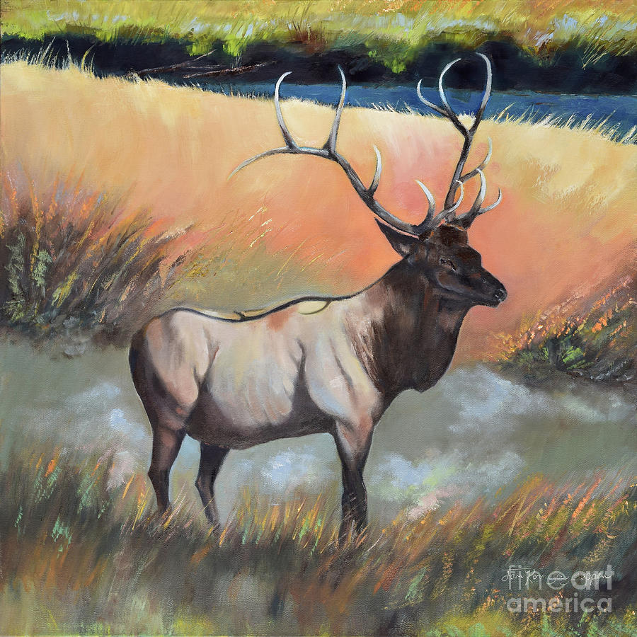 Wapiti - Enduring Elk by Jan Dappen