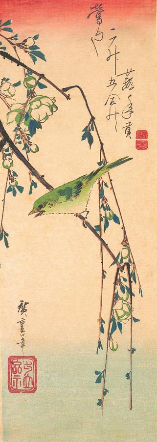 Utagawa Hiroshige Painting - Warbler On A Plum Branch by Utagawa Hiroshige