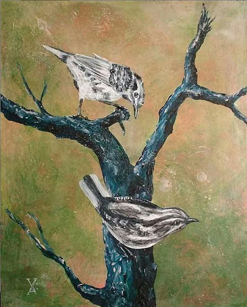 warblers by Violet Jaffe