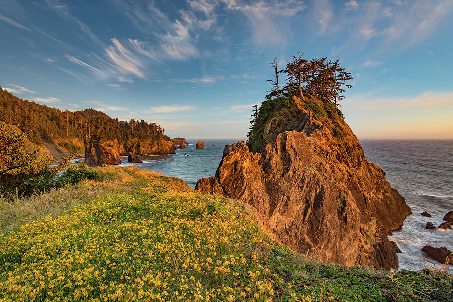 Beautiful Photograph - Warm And Peaceful Coast by Leland D Howard