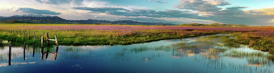 Nature Photograph - Warm Idaho Spring by Leland D Howard