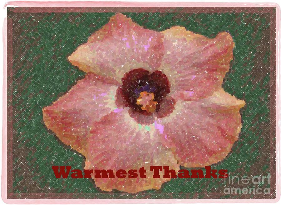Warmest Thanks by Barbie Corbett-Newmin