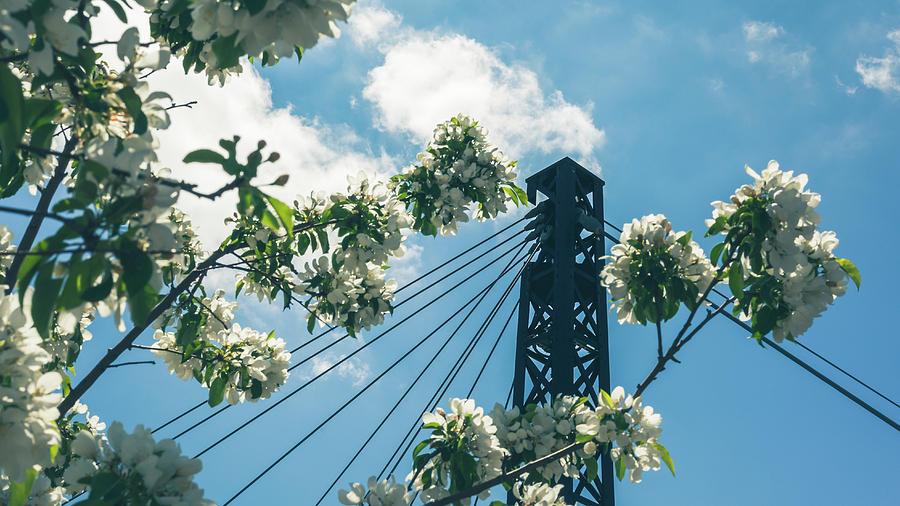 Washington Plaza Bridge, Golden, CO by Jeanette Fellows