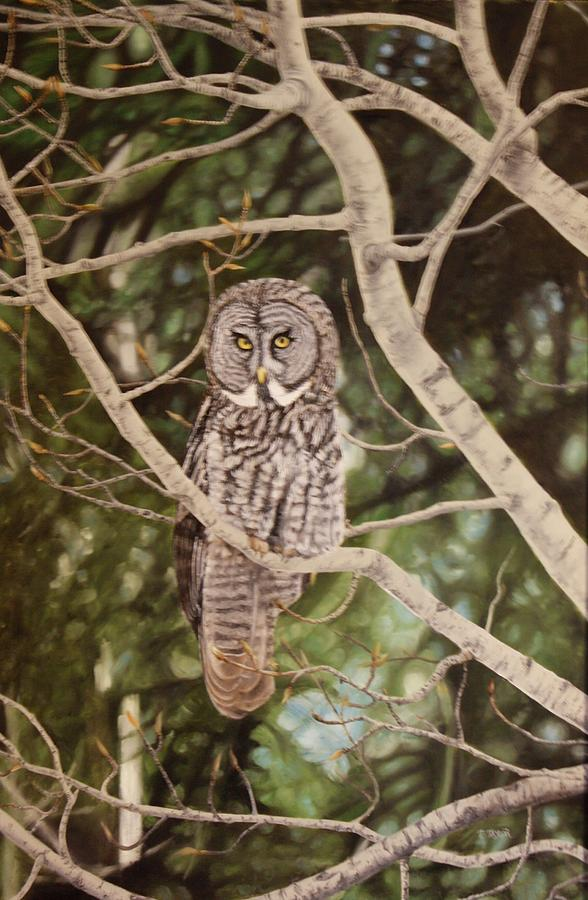 Watchful Painting by Tammy Taylor