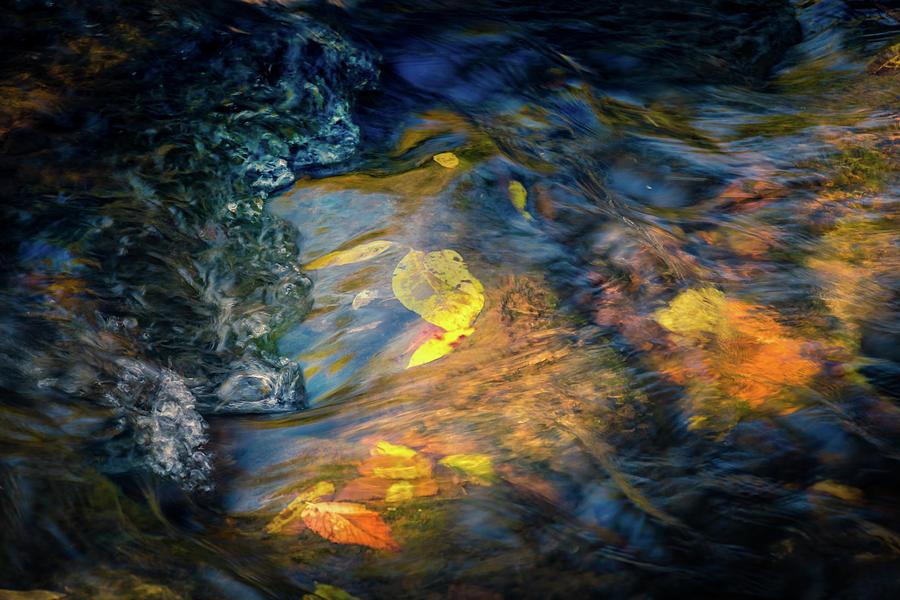 Water Color by Allin Sorenson