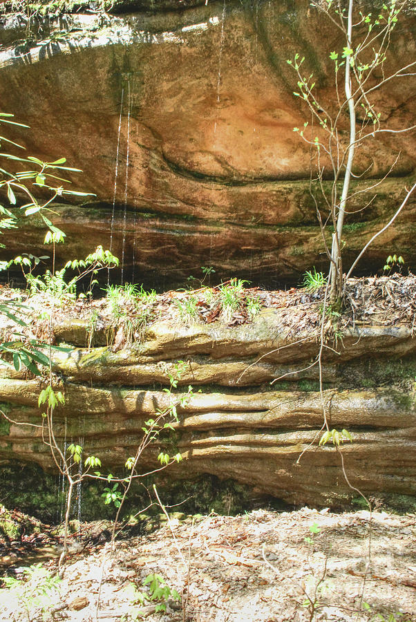Water Dripping Down Sandstone by Phil Perkins
