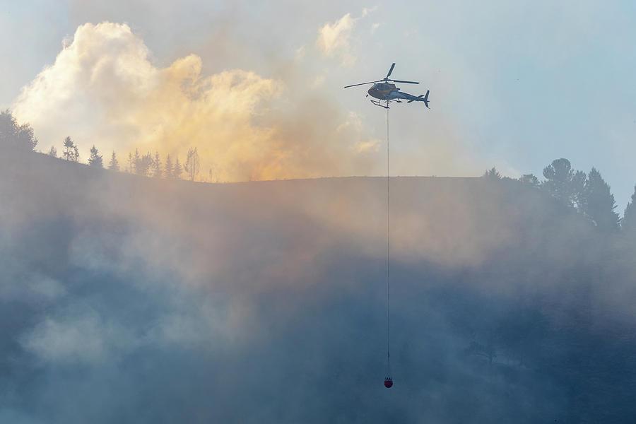 Appalachian Photograph - Water Drop On Wildfire by Michael Chatt