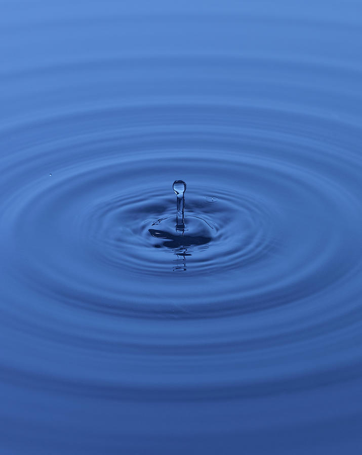 Water Drops Photograph by Buena Vista Images