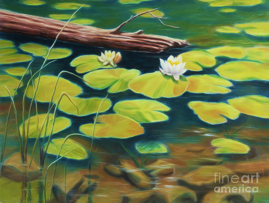 Water Lilies Pastel