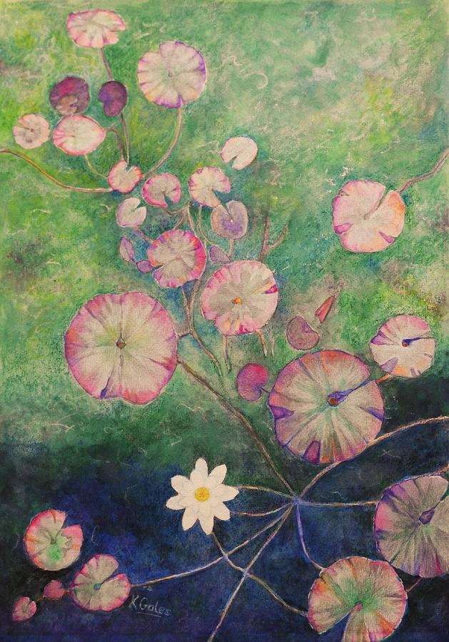 Water Lily by Kathy Gales