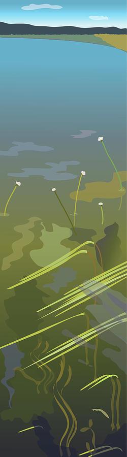 Lake Digital Art - Water Weeds by Marian Federspiel