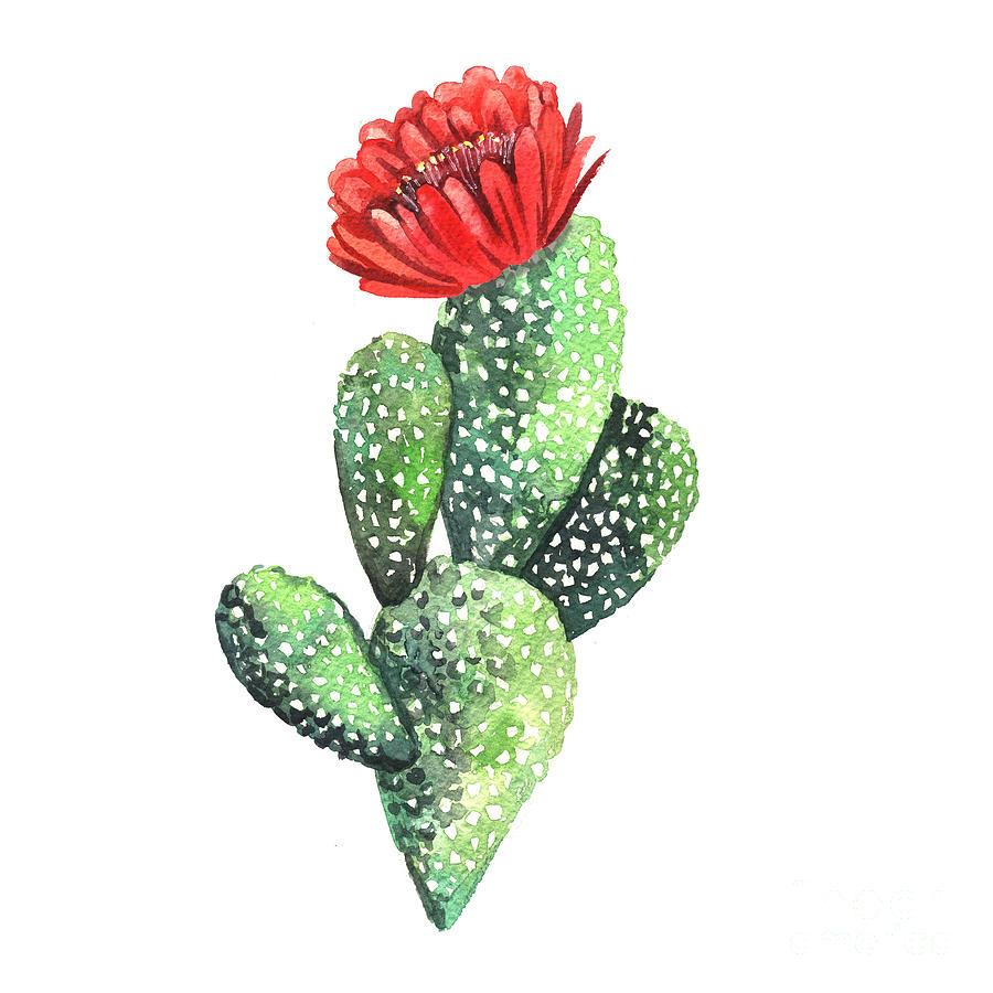 Flora Digital Art - Watercolor Cactus. Original Watercolor by Yudina Anna