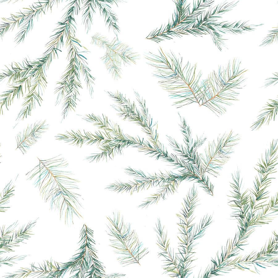 Year Digital Art - Watercolor Christmas Tree Branches by Eisfrei