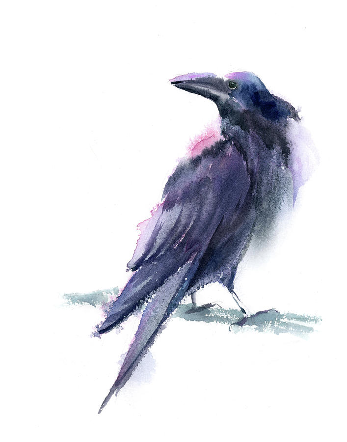 Raven Painting - Watercolor Raven by Paintis Passion