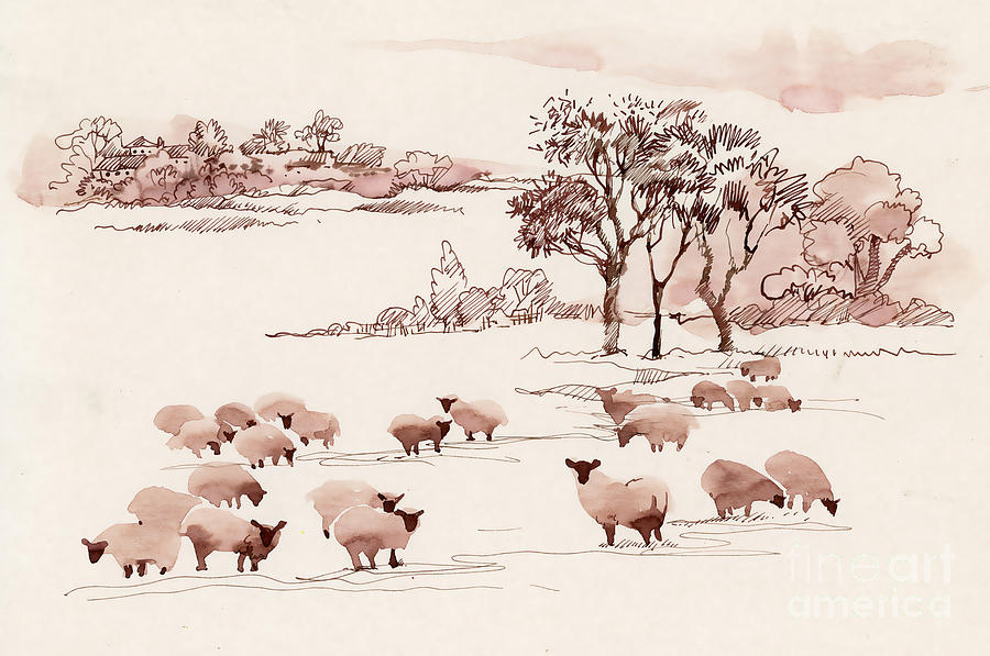 Milch Digital Art - Watercolor Summer Landscape With Sheep by Kostanproff