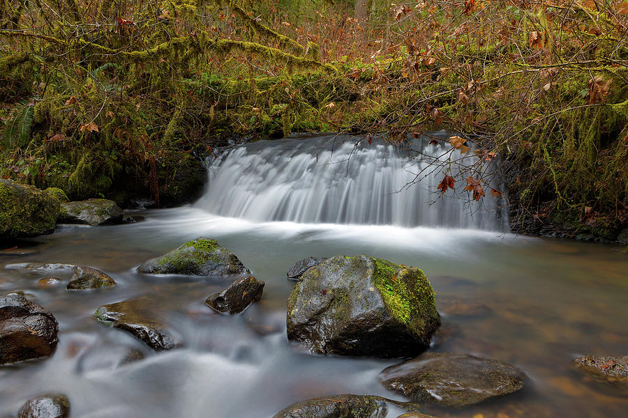 Waterfall at McDowell Creek Falls County Park by David Gn