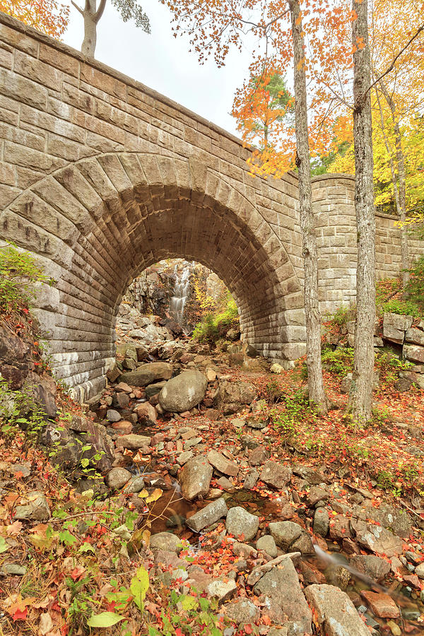 Waterfall Bridge, Autumn, Acadia Photograph by Picturelake