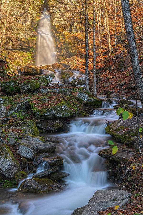 Waterfall Contrasts by Angelo Marcialis