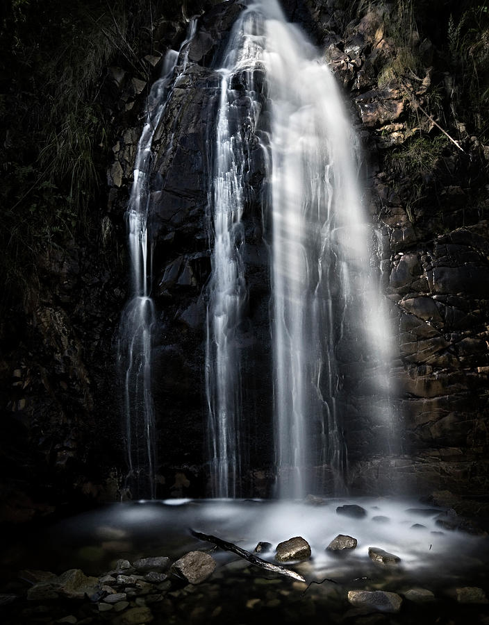 Waterfall Gully Second Falls Photograph by Sd Smart