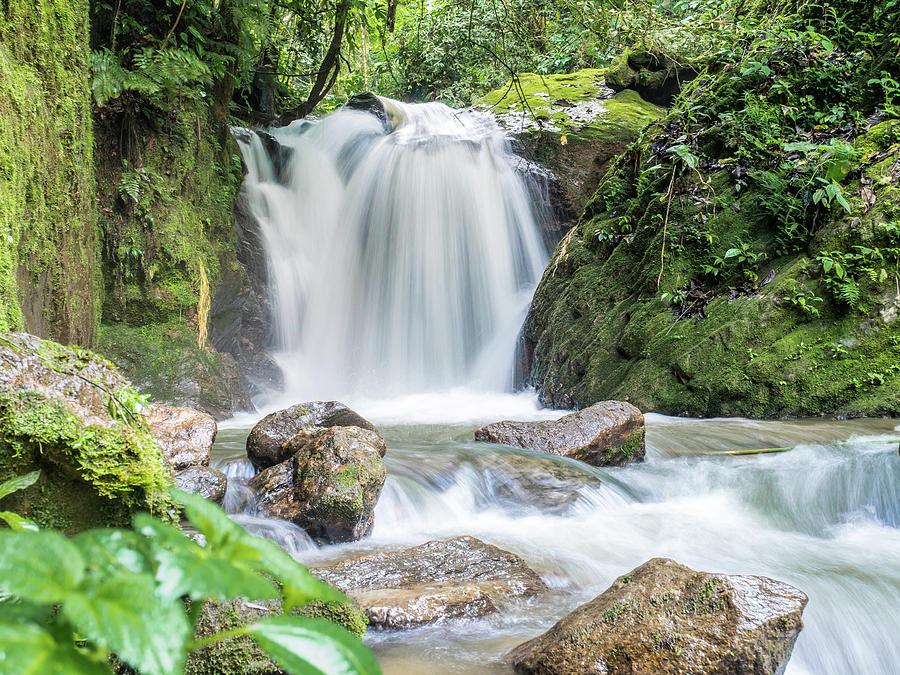 Waterfall In The Ecuadorian Jungle