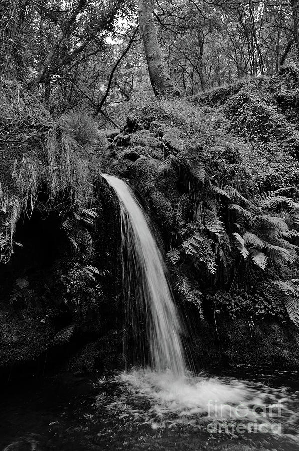 River Photograph - Waterfall In The Middle Of Carvalhais Forest. Monochrome by Angelo DeVal
