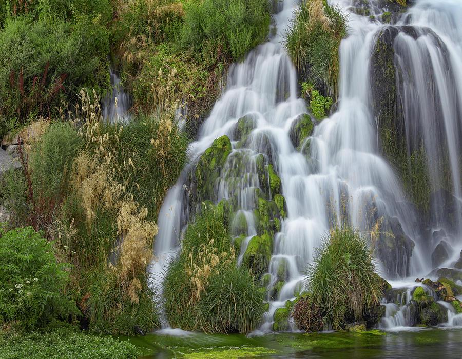 Waterfall, Niagara Springs, Idaho by Tim Fitzharris