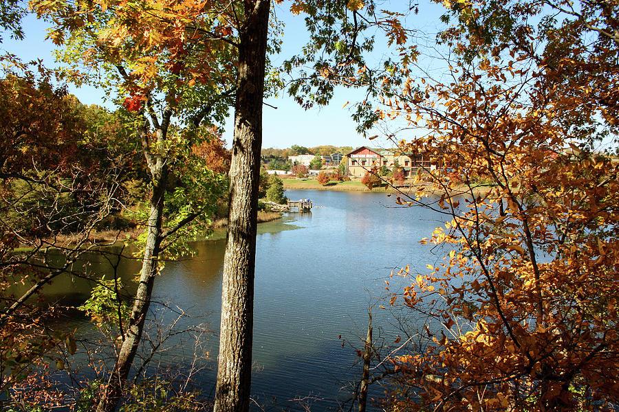 Waterfall Park Autumn by Ellen Tully