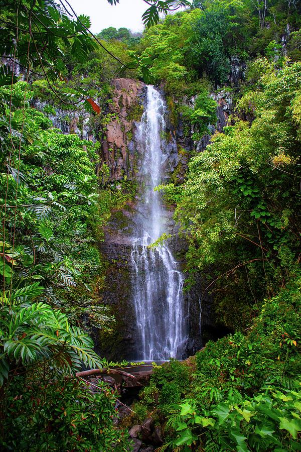 Waterfall Photograph - Waterfall by Robert Michaud