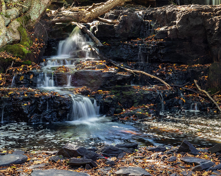 Waterfall - Shohola PA  by Amelia Pearn