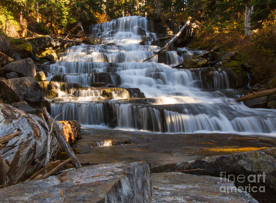 Forest Photograph - Waterfalls Flowing Through The Forest by Fremme